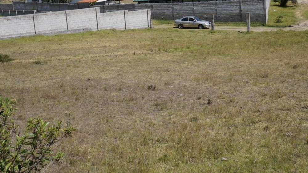 Amplio terreno en venta en el barrio Las Palmeras, parroquia La Merced