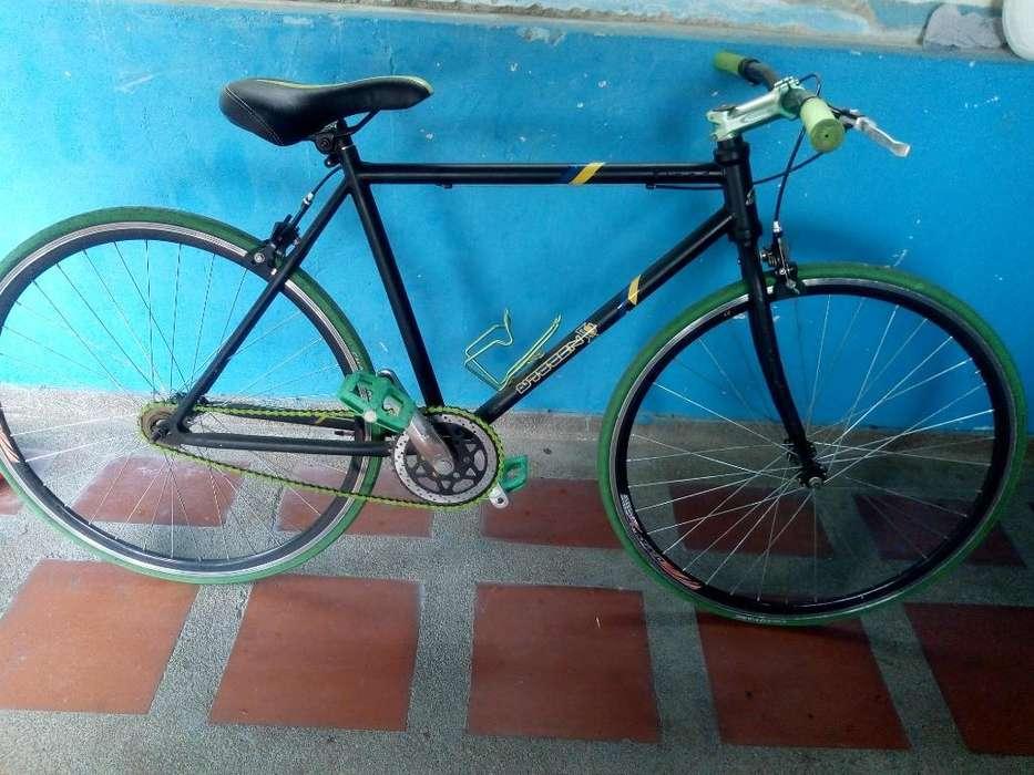 Bicicleta de Ruta Zuppra Original