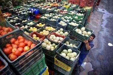 Cajas plasticas de segunda para verduras