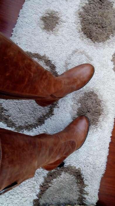 botas altas miel