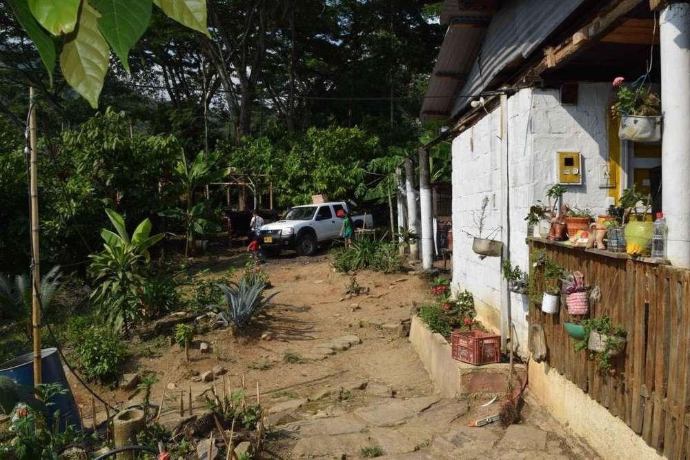 Venta de finca San Vicente de Chucurí - 16 Hectáreas - a 19 minutos del casco urbano