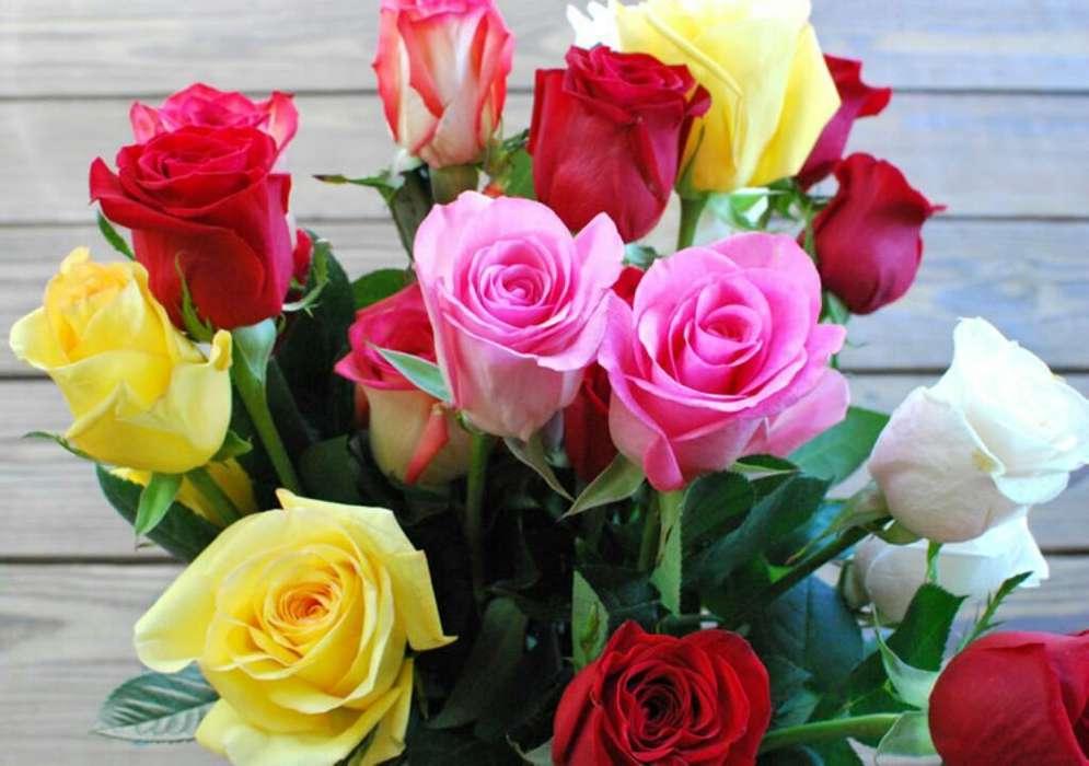Vendedores de Rosas