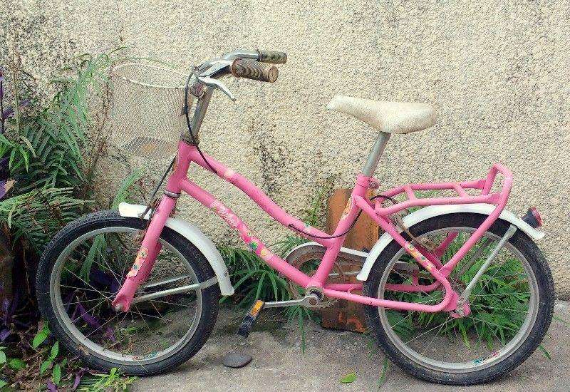 Bicicleta Winter, rodado 16, con canasto 2.350 Negociable