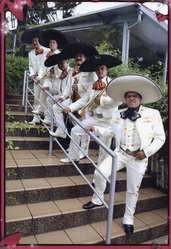 Mariachi Halcones de Mexico 6015828