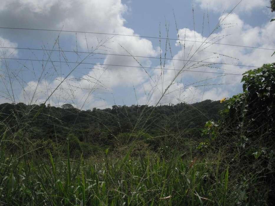 Venta de 5 hectareas de terreno en la av Simón Bolívar.