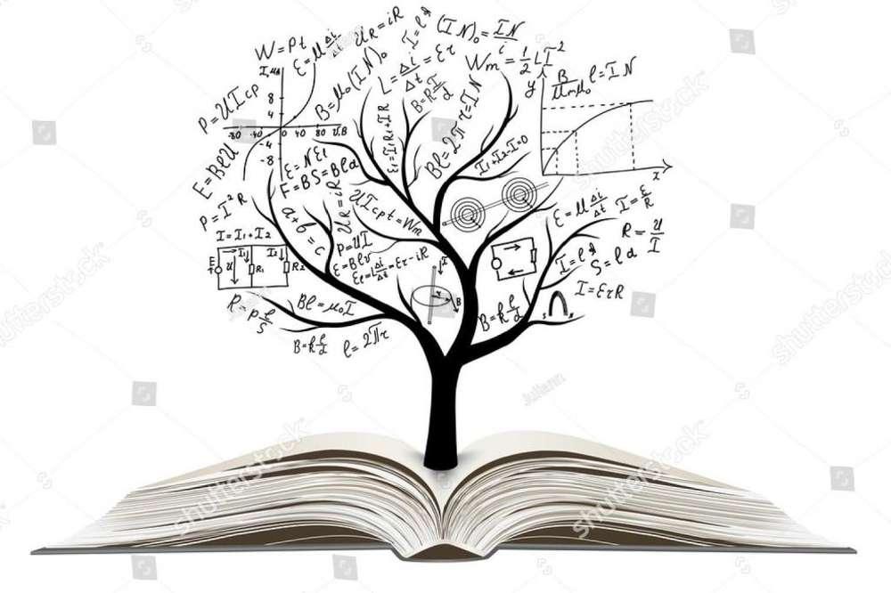 Matemáticas, Física, Química, Ingles, Preuniversitario. Profesora con más de 18 años de experiencia.