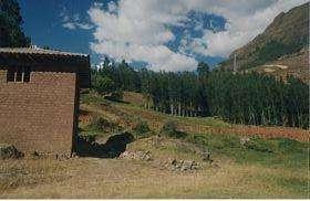3.85 hectáreas, chacra con manantial Pisac Cusco - wasi_967811