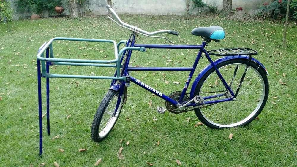 Vendo bicicleta de reparto impecable, con o sin conservadora