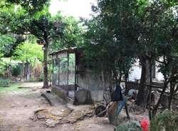Vendo Lote en El Caguan (neiva-huila)