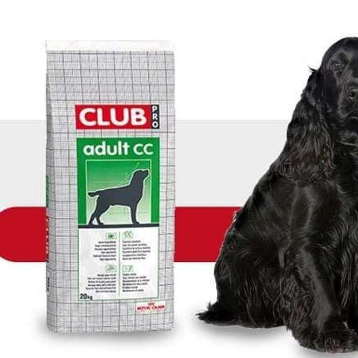Royal Canin Club <strong>perro</strong>s Adultos Toda Raz