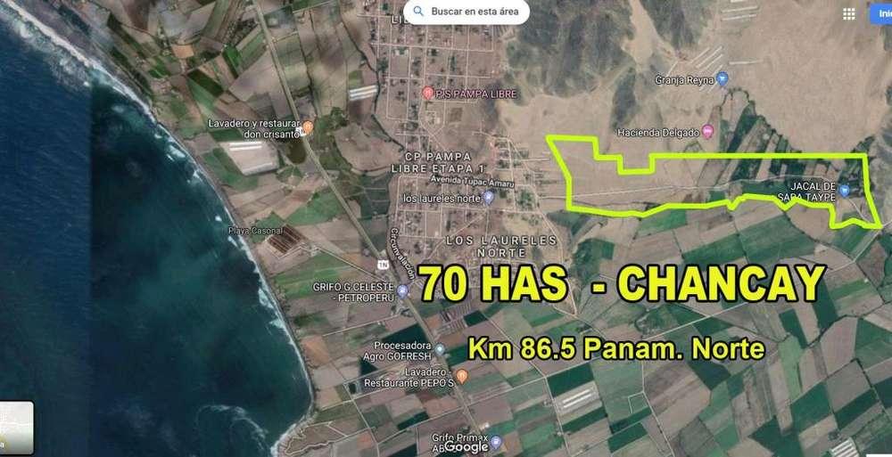 OCASIÓN VENDO TERRENO DE 70 HAS EN CHANCAY - HUARAL