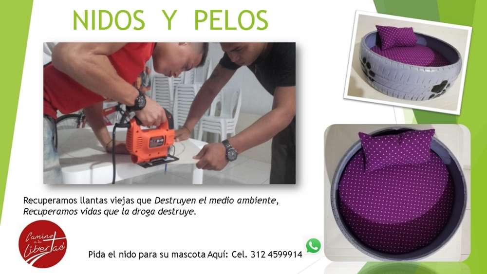NIDOS & PELOS