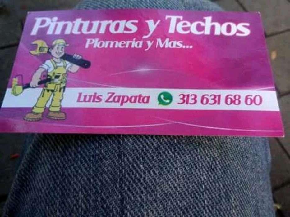 Pinturas Techos Driwall Y Mas