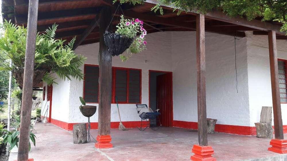 Se Vende Finca en Lomagorda Ginebra Vall