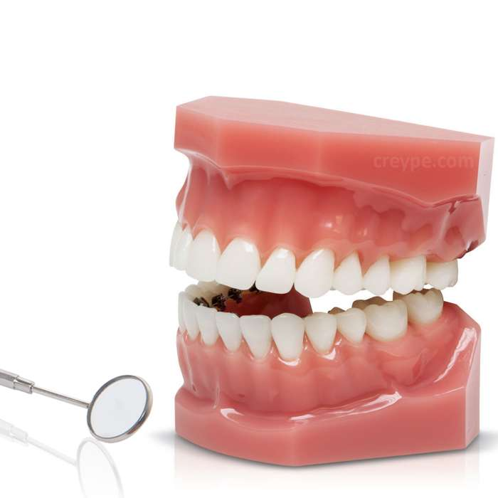 Curso De Técnico Dental Auxiliar