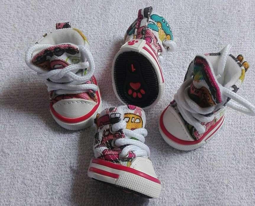 Zapatos Tipo Converse. para Perritos