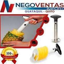 <strong>extractor</strong> DE PULPA PARA PIÑA