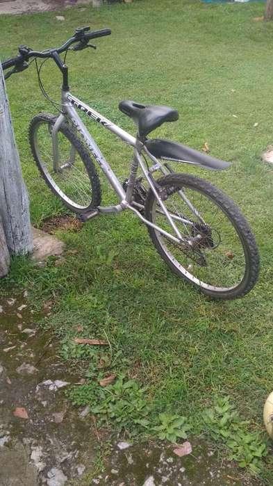 Mountain Bike R24 25cambios
