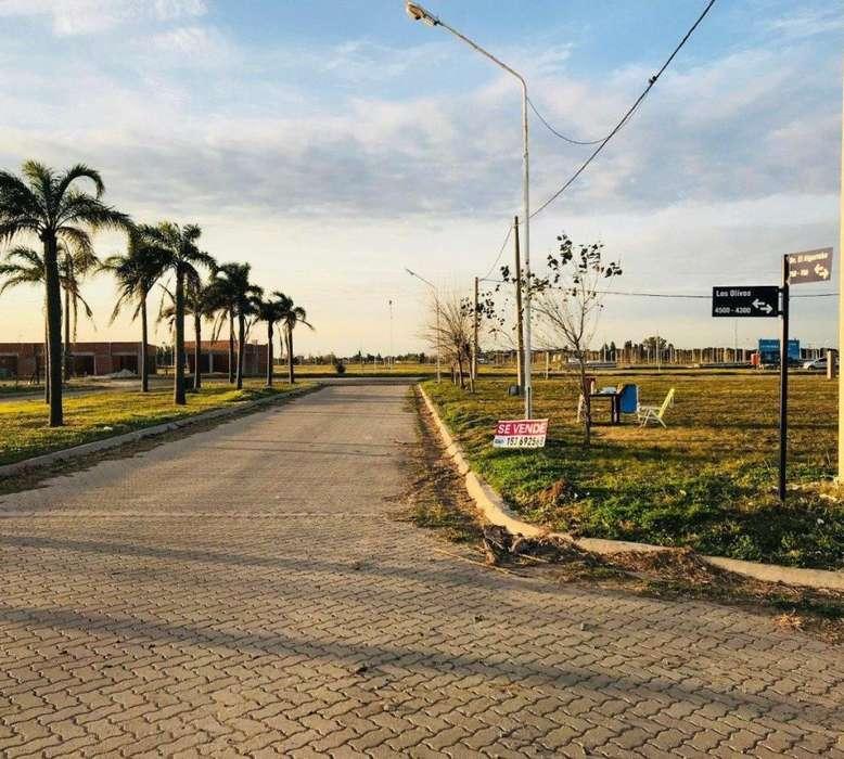 Venta de Lotes sobre boulevard con habilitacion comercial. Tierra de Sueños Puerto San Martin. 3 lotes contig