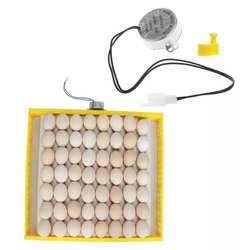 Motor Volteador D Huevos para Incubadora