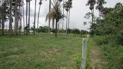 A 15 minutos de Villavicencio por la salida a puerto Lopez