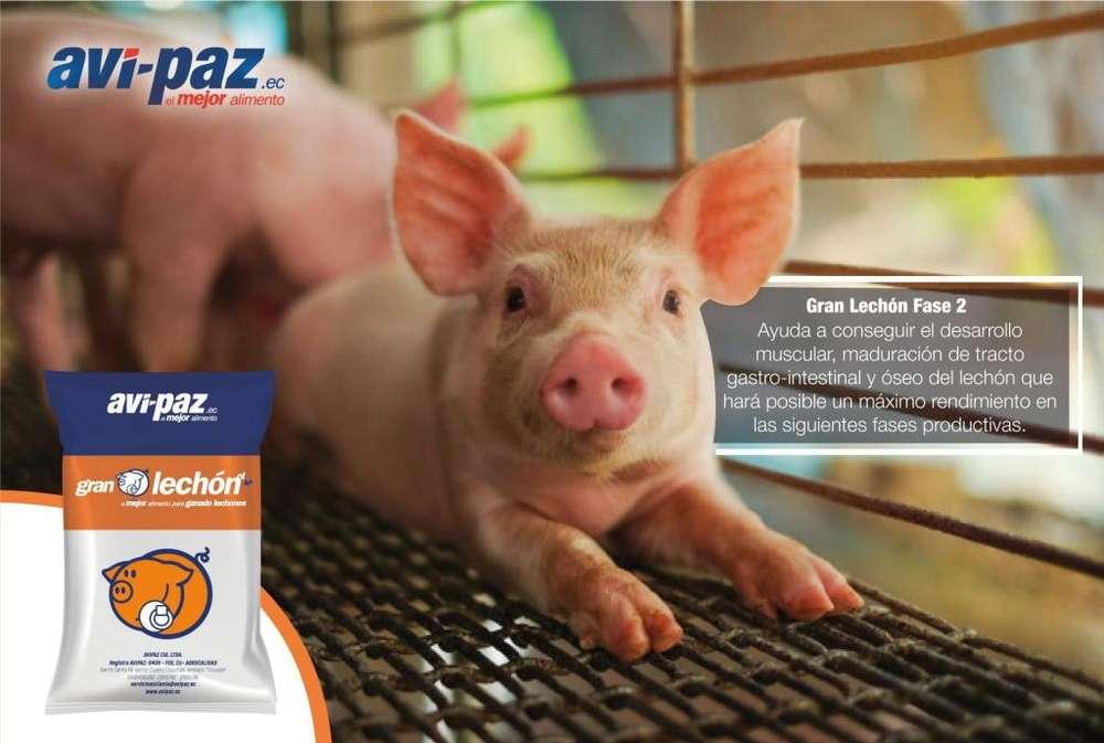 Venta de alimento Balanceado Avipaz <strong>pollos</strong>,cerdos, Gallos