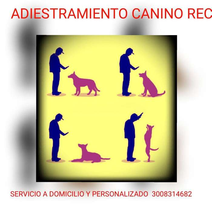 <strong>adiestramiento</strong> Canino Rec