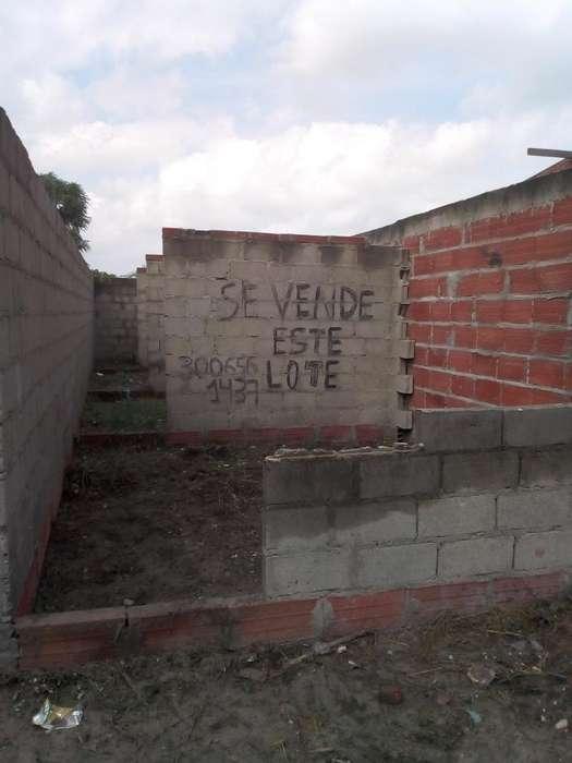 Venta Del Lote