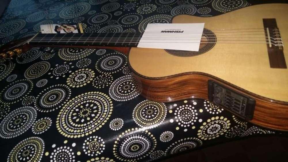 Guitarra Alpujarra 86 Con Preamp Fishman Plus T