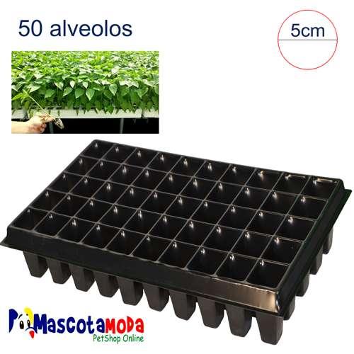 Semilleros bandejas de varias medidas para huertos e invernaderos