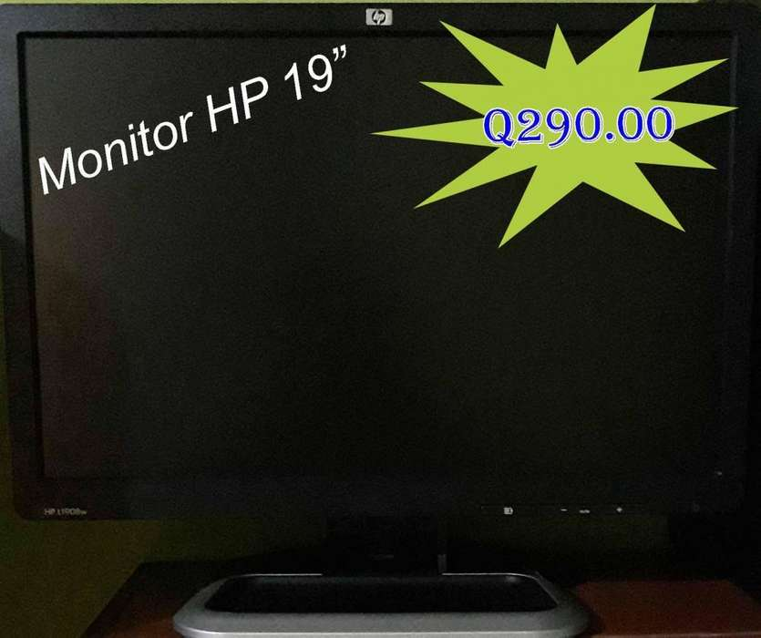 Monitores HP 19