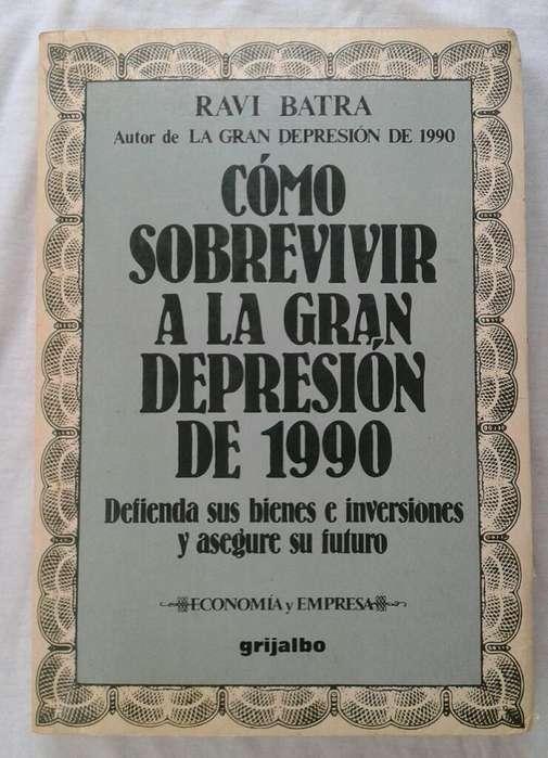 Libro Como Sobrevivir Ala Gran Depresion