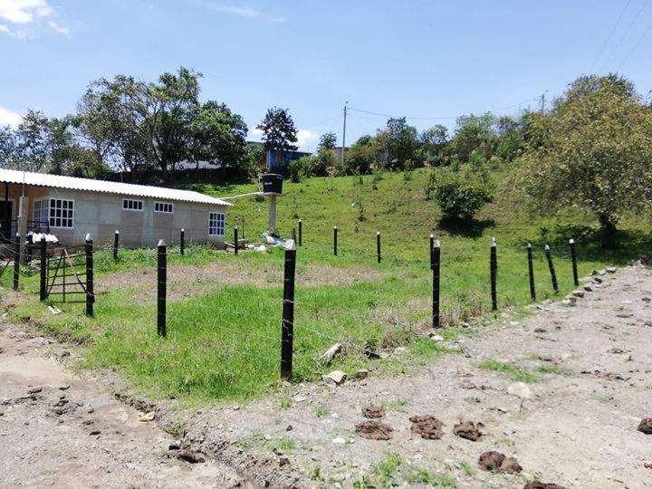 Vendo lote en la Magdalena municipio de quebrada negra