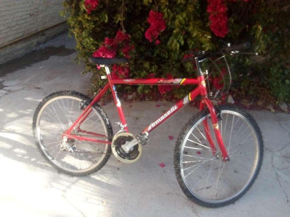 Bicicleta Tomaselli, sin Ningún Uso