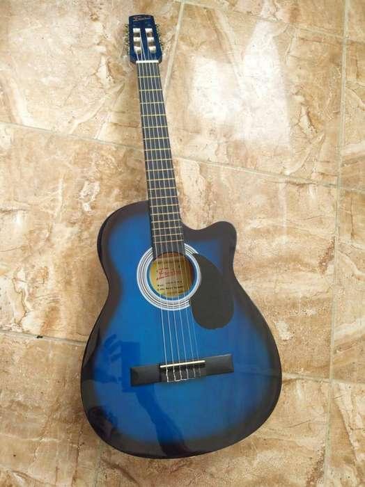 guitarra acustica freedom