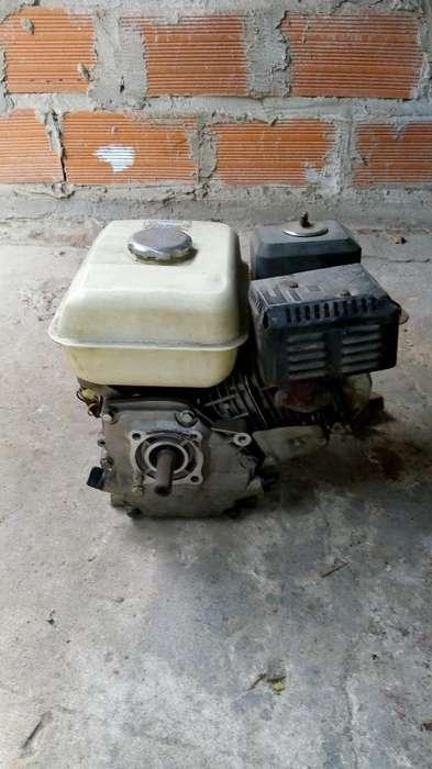 Motor Onda 6.5 Hp Retificado 1557955686