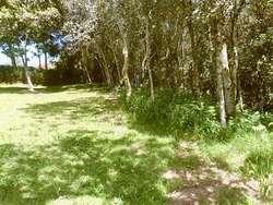 Finca en Venta o cambio en Santa Elena 15.000 mt²