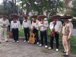 Mariachi Auténtico Mexicano Show de