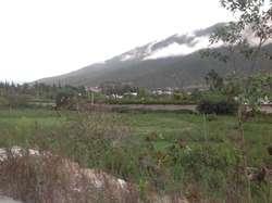 Venta Terreno 12955 m² en La Vía Simón Bolivar
