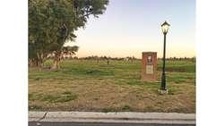Santa Emilia Lote / N 2190704 - UD 35.000 - Terreno en Venta