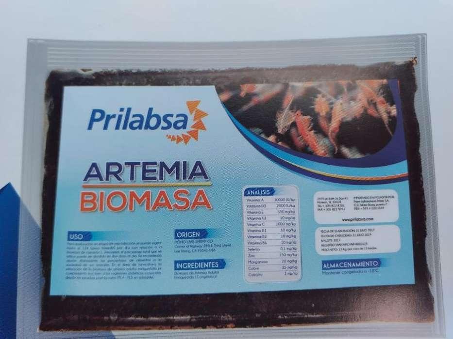 Venta de Artemia Congelada