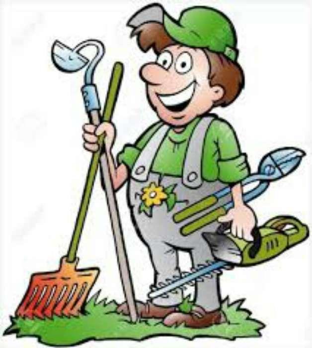 Podas Y Mantenimiento de Jardines