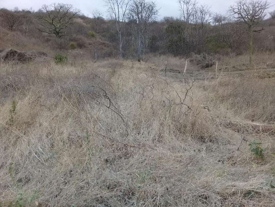 Vendo Terreno Paso Lateral Valle Hermoso