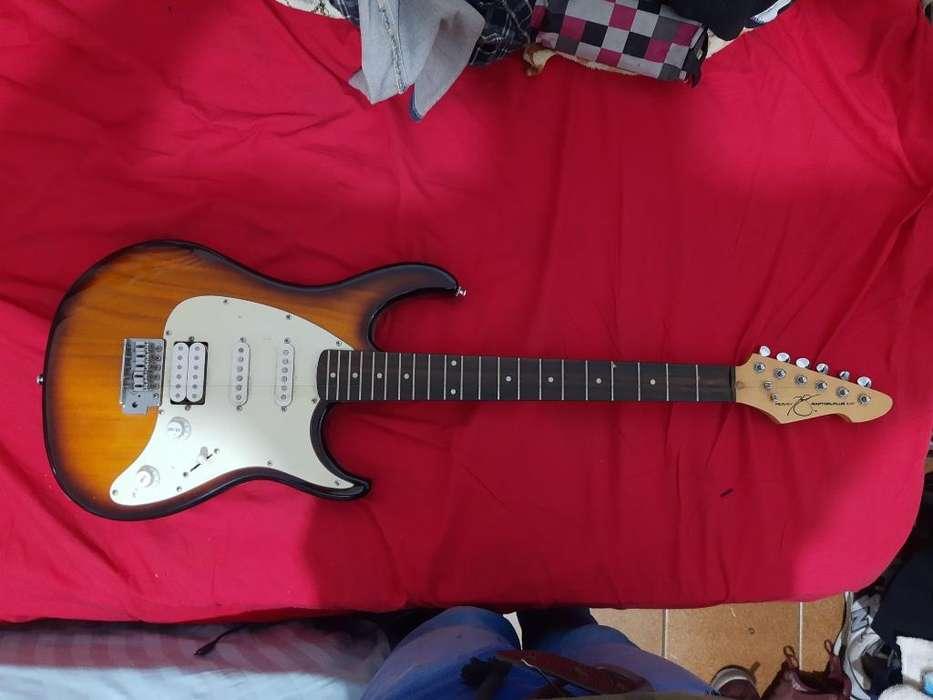 Guitarra Peavey Raptor, Recibo Tarjeta