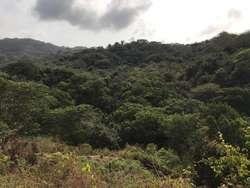 Finca en Santa Marta, Reserva Natural frente al Parque Tayrona