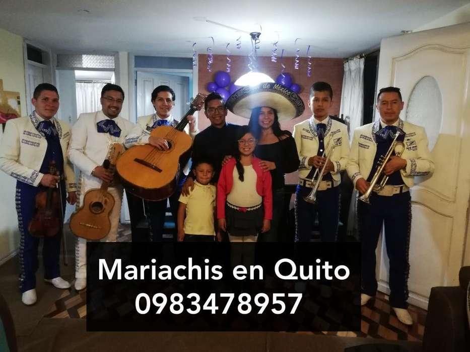 Mariachis en Capelo El Triangulo Precios