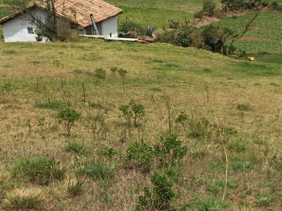 Vendo hermosa parcela, excelente ubicación, a 5 minutos de Tibasosa, en el corredor turístico de Boyacá