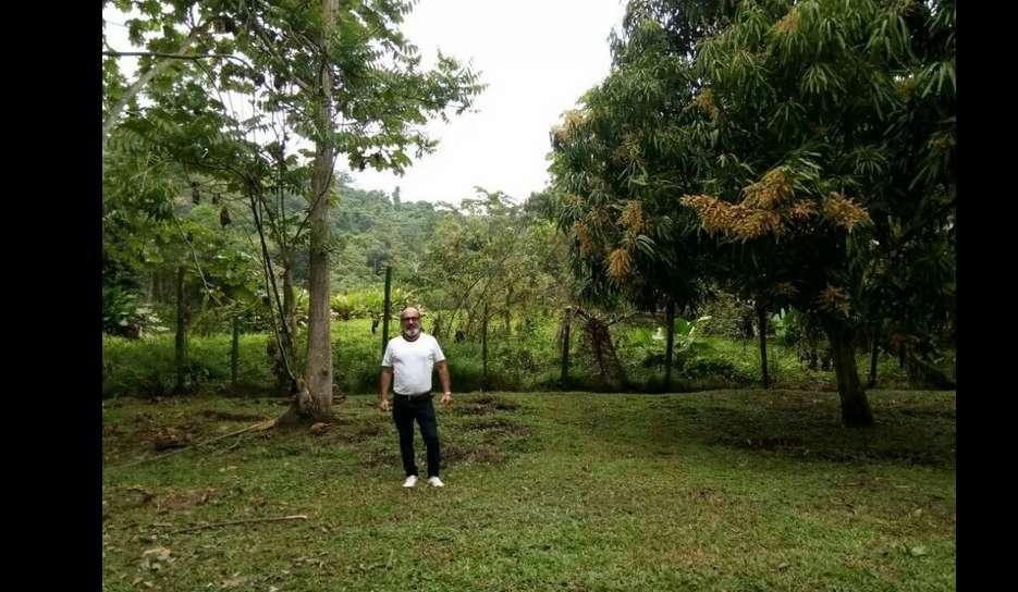 Venta terreno de 8,000 y 2,000 metros en carretera a Pimentel.