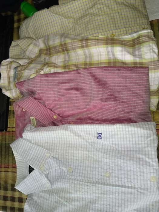 <strong>camisa</strong>s Talle M