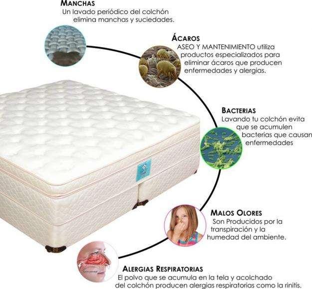 Desinfección y Lavado con vapor de colchones, muebles y alfombras. AM Aseo y Mantenimientoo